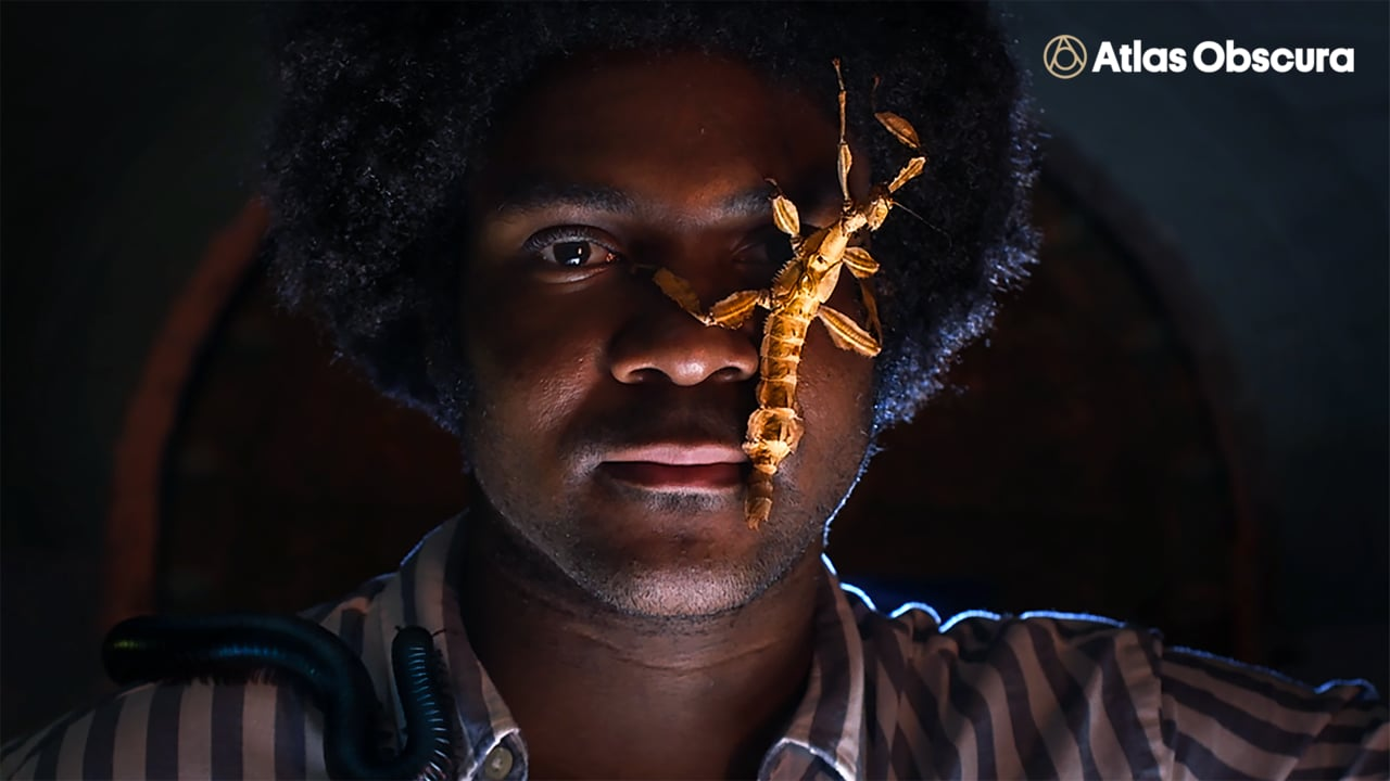 Meet the Bug Whisperer with Atlas Obscura