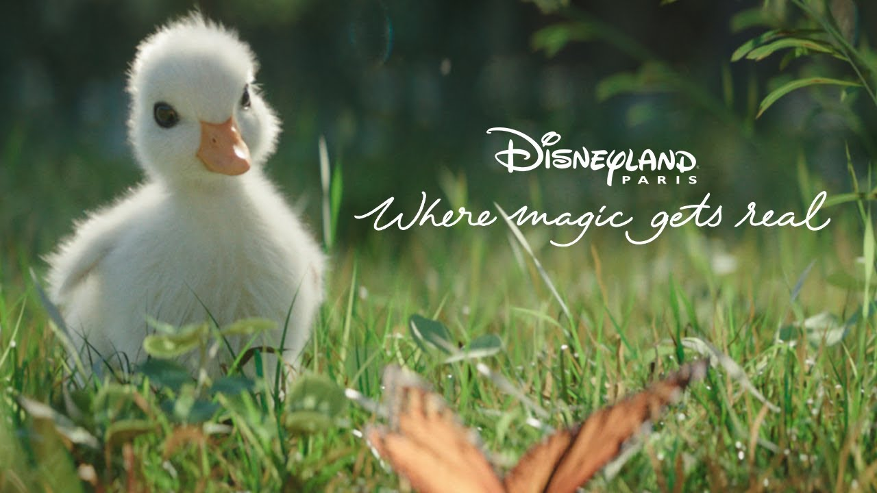 Disneyland Paris go straight for the heartstrings with The Little Duck