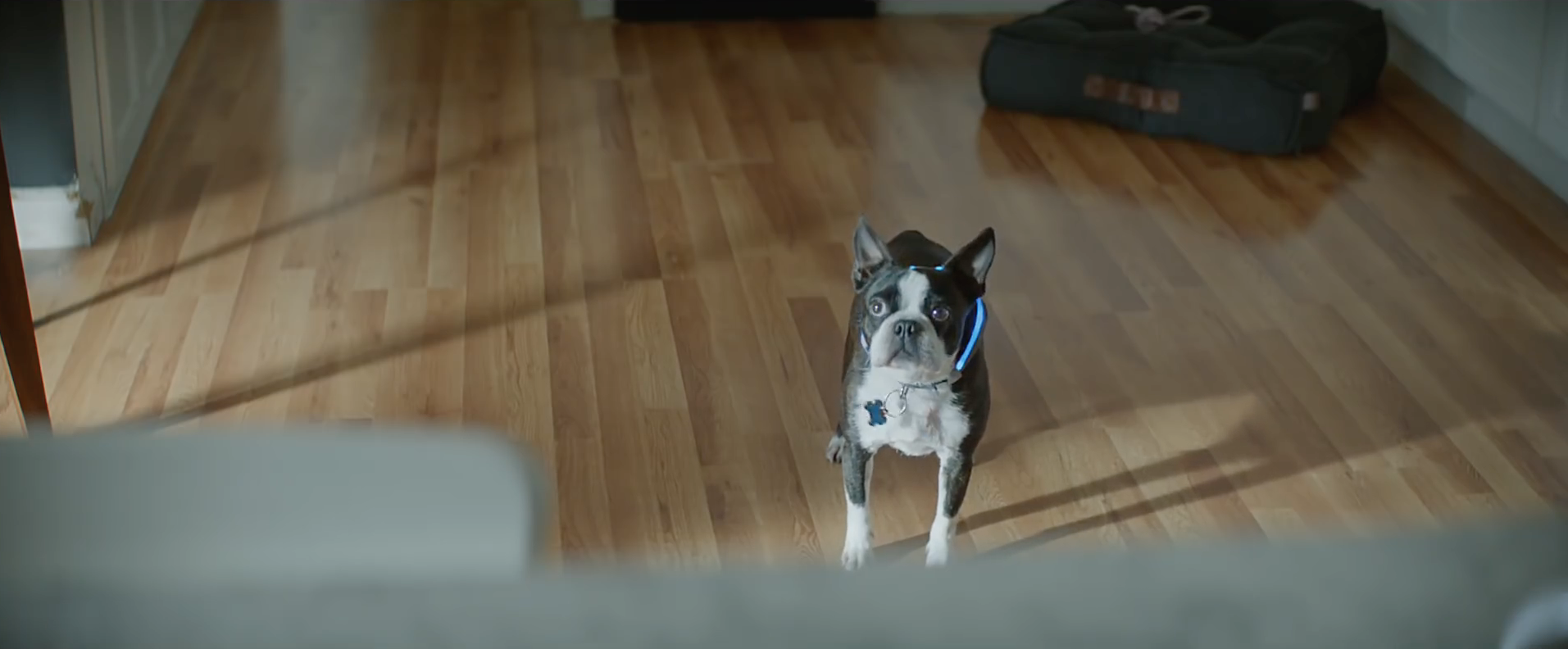 f56ac56d8 Check out Amazon s star-studded Super Bowl ad  Not Everything Makes the Cut