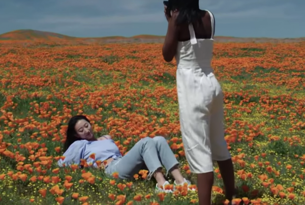 Instagrammers Are Killing This Precious Field of Poppies