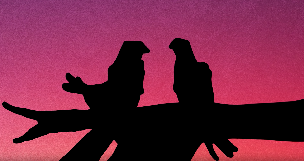 RSPB Use Stunning Shadow Puppetry In This Moving Appeal