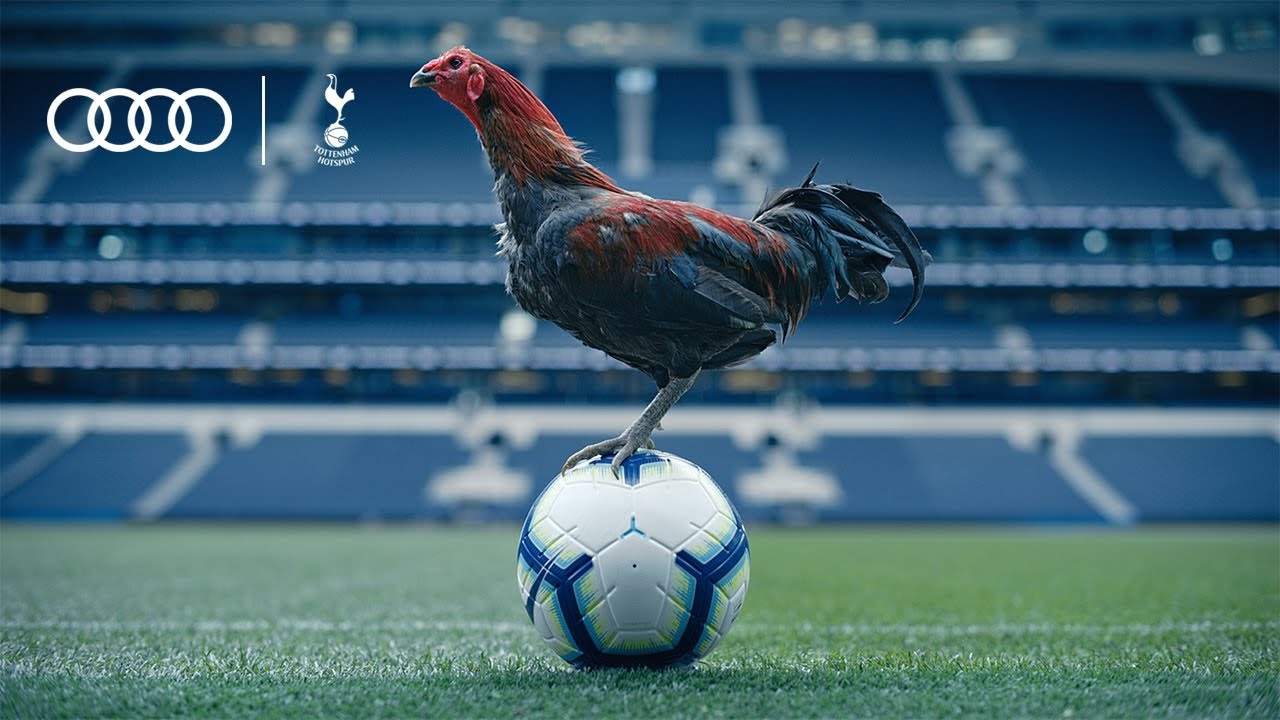 Audi, Tottenham Hotspur And A Chicken Show Us Around White Hart Lane