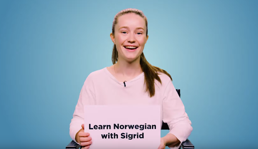 Sigrid Teaches You Norwegian Slang