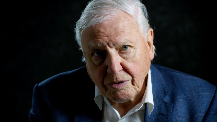 David Attenborough Tackles Climate Change In A New Nature Doc About Humans