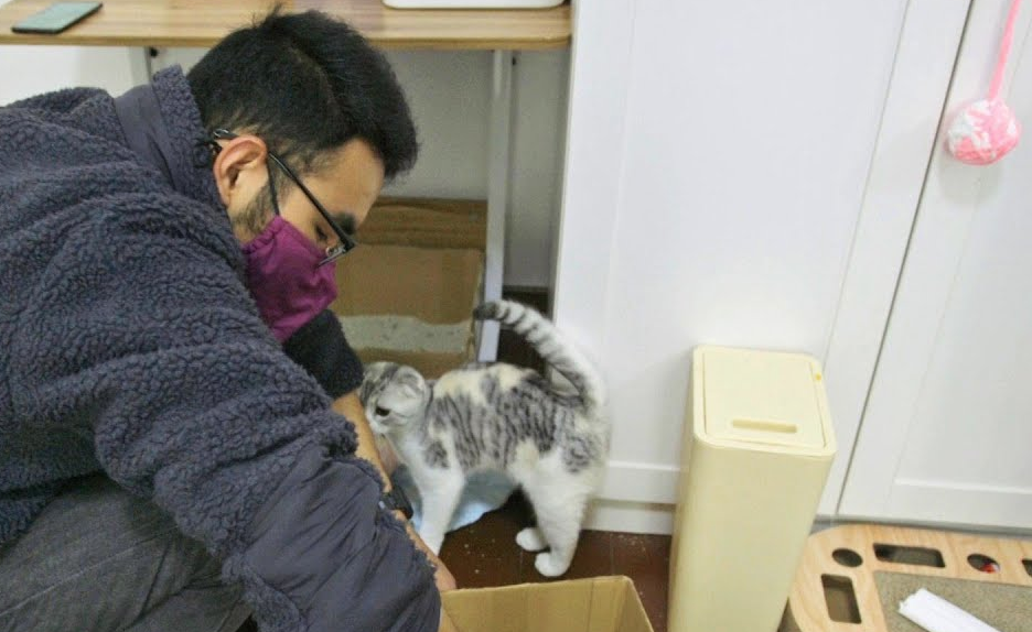 The Guardian Meets The Catman Of Wuhan, Who's Saving Left-Behind Pets