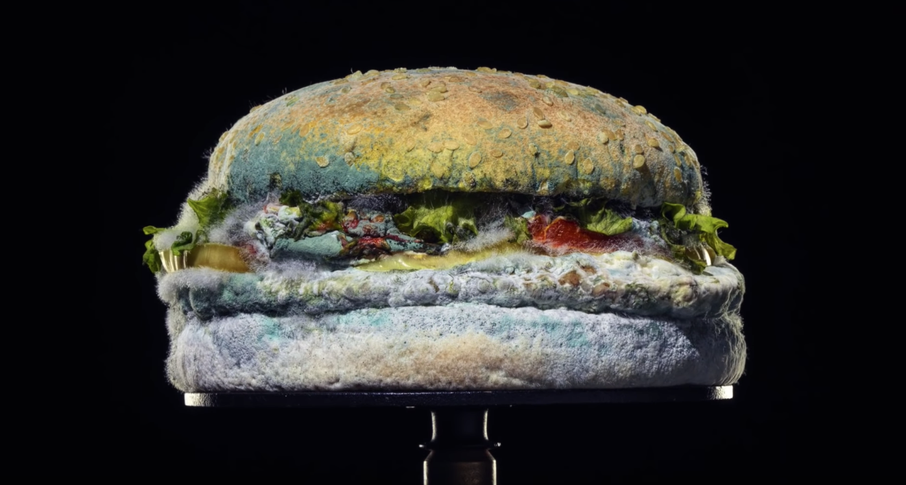 Burger King's New Ad Features A Very Mouldy Burger For An Interesting Reason