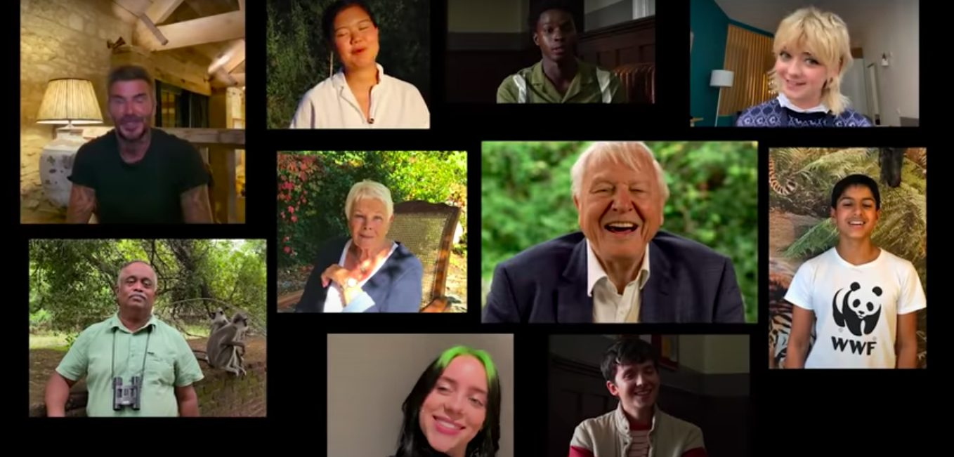 David Attenborough Answers Questions From Famous Fans