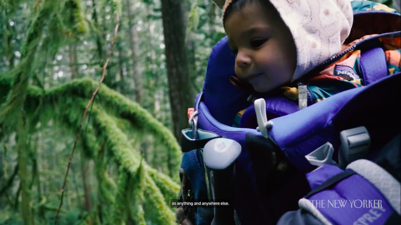 See Vancouver Through A Child's Eyes